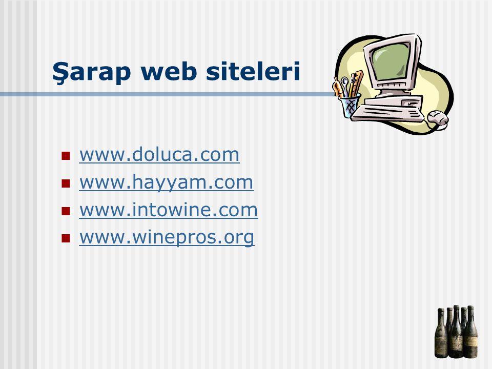 Şarap web siteleri www.doluca.com www.hayyam.com www.intowine.com