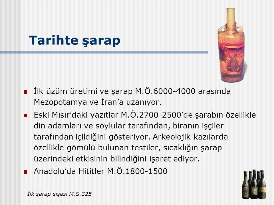 Tarihte şarap İlk üzüm üretimi ve şarap M.Ö.6000-4000 arasında Mezopotamya ve İran'a uzanıyor.