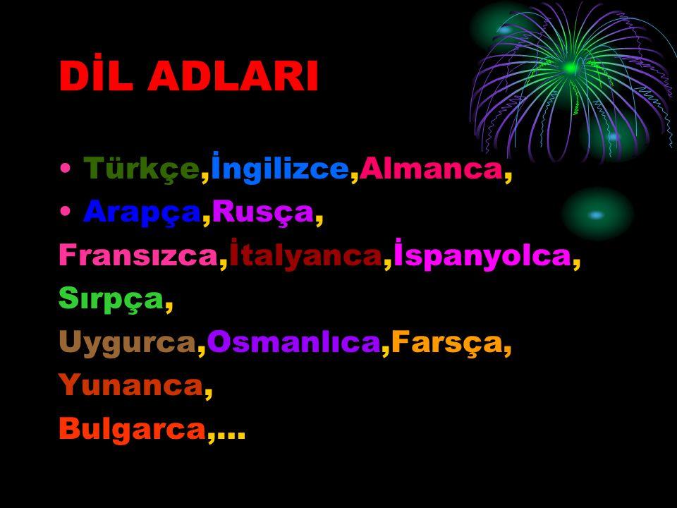 DİL ADLARI Türkçe,İngilizce,Almanca, Arapça,Rusça,
