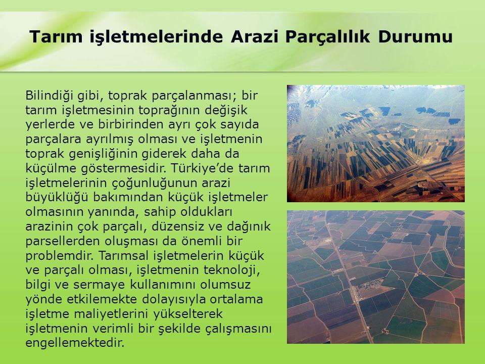 Tarım işletmelerinde Arazi Parçalılık Durumu