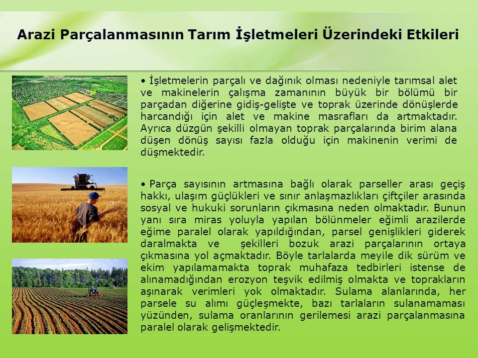 Arazi Parçalanmasının Tarım İşletmeleri Üzerindeki Etkileri