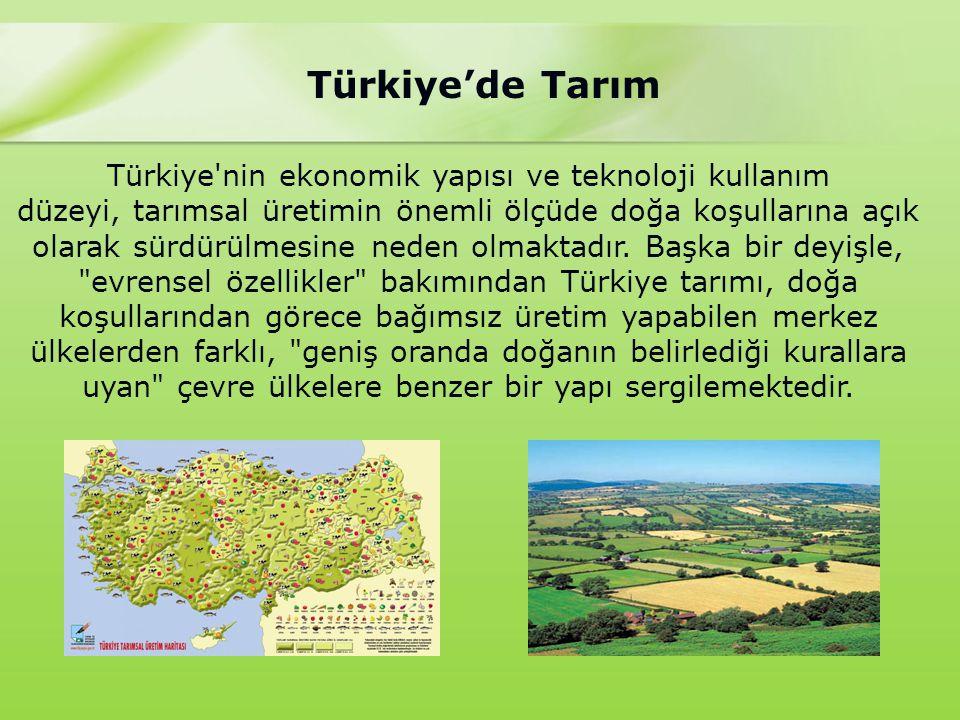 Türkiye'de Tarım Türkiye nin ekonomik yapısı ve teknoloji kullanım