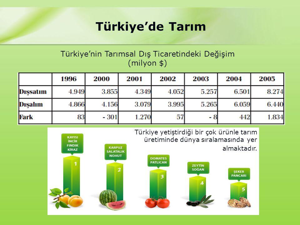 Türkiye'nin Tarımsal Dış Ticaretindeki Değişim