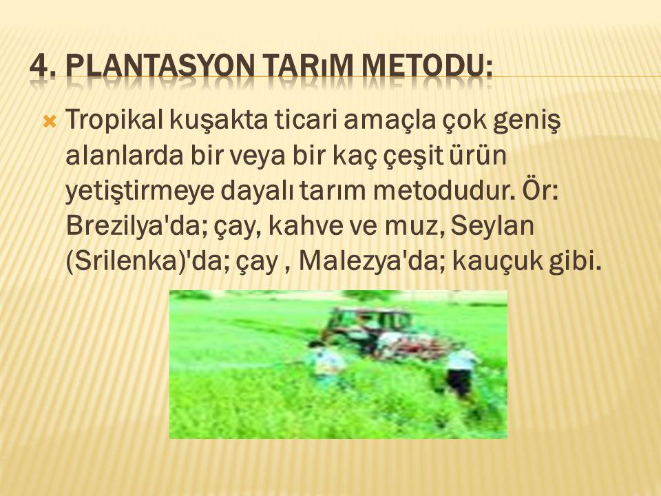 4. Plantasyon Tarım Metodu: