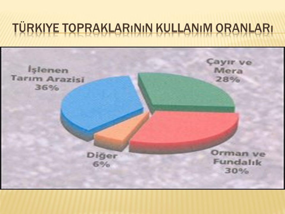 türkiye topraklarının kullanım oranları