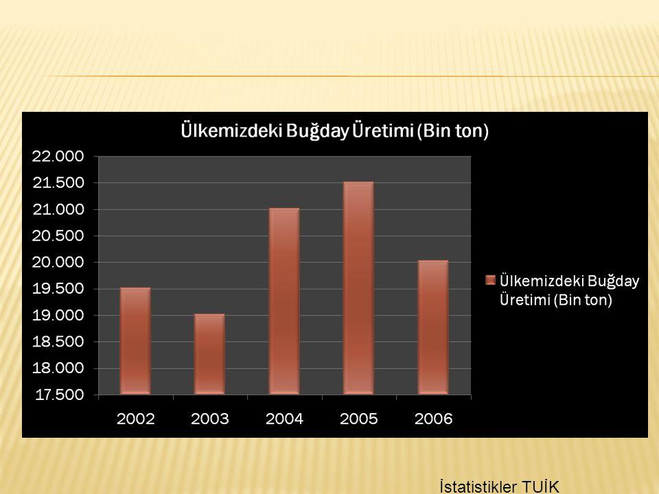 İstatistikler TUİK