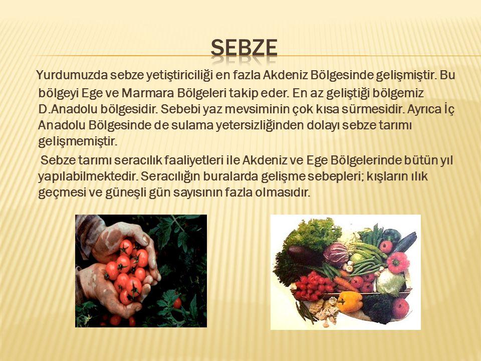 SEBZE