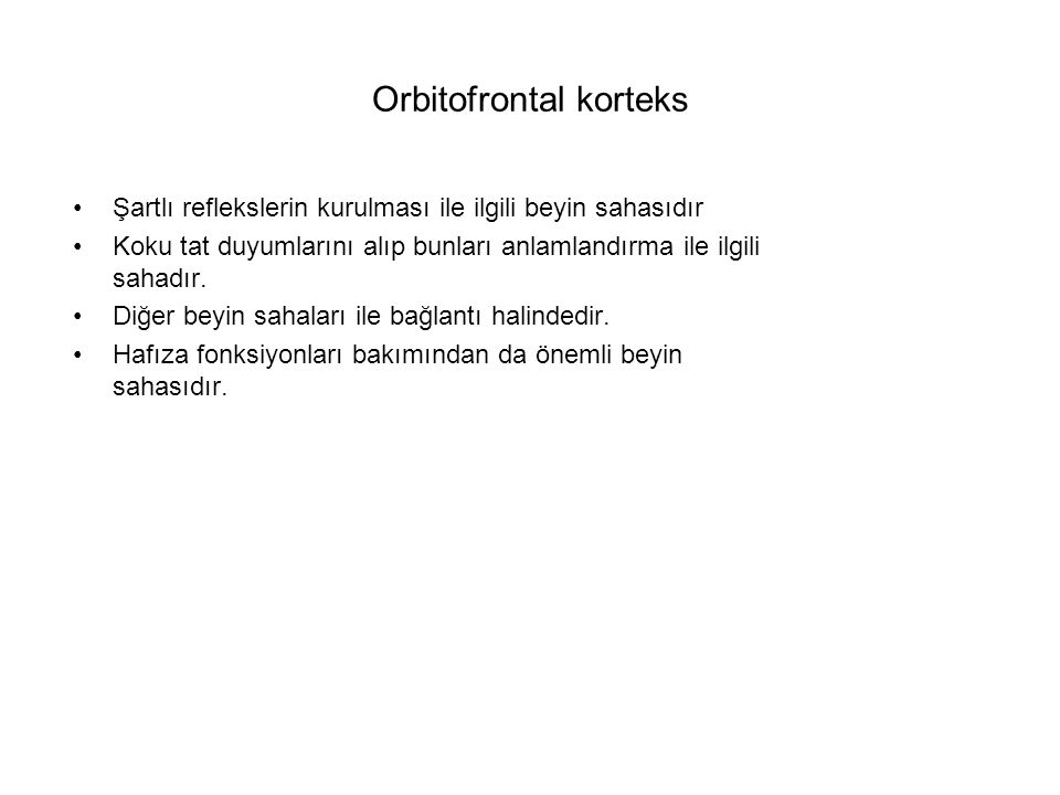 Orbitofrontal korteks