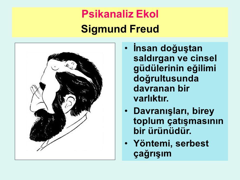 Psikanaliz Ekol Sigmund Freud