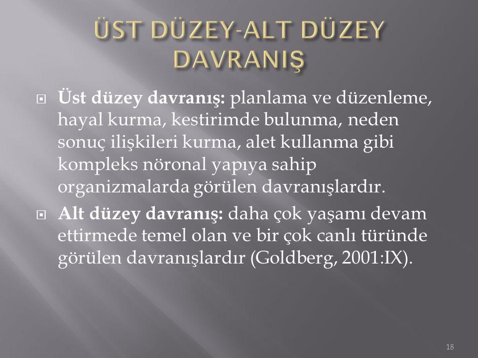 ÜST DÜZEY-ALT DÜZEY DAVRANIŞ