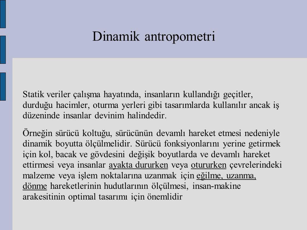 Dinamik antropometri