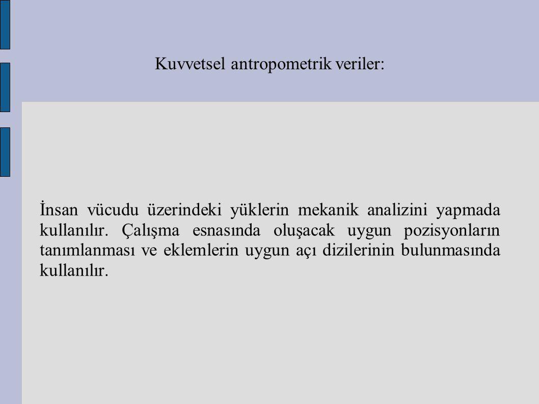 Kuvvetsel antropometrik veriler: