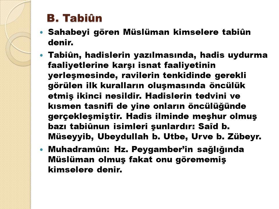 B. Tabiûn Sahabeyi gören Müslüman kimselere tabiûn denir.