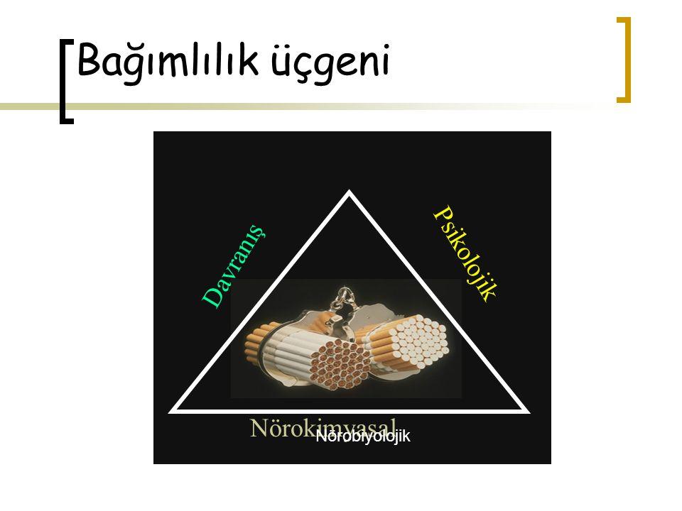 Bağımlılık üçgeni Nörokimyasal Davranış Psikolojik Nörobiyolojik