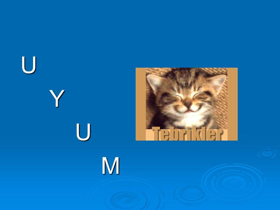 U Y M