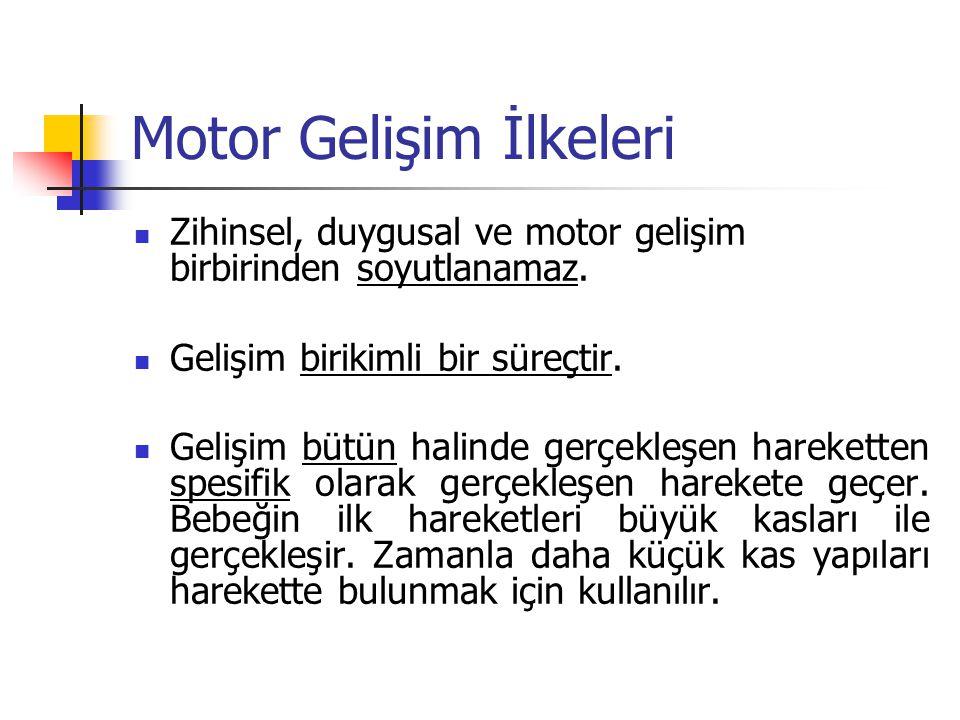 Motor Gelişim İlkeleri