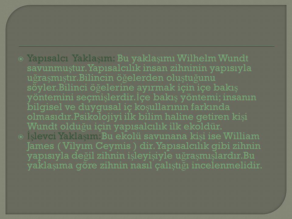 Yapısalcı Yaklaşım: Bu yaklaşımı Wilhelm Wundt savunmuştur