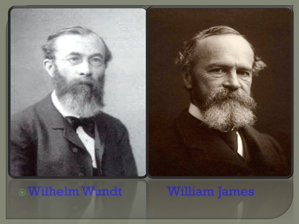 Wilhelm Wundt William James