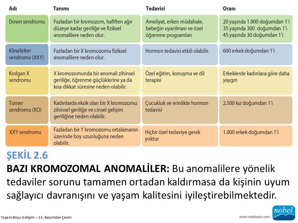 ŞEKİL 2.6