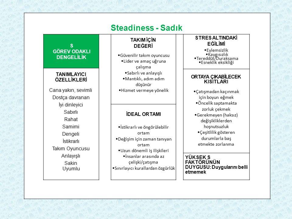Steadiness - Sadık S GÖREV ODAKLI DENGELİLİK TAKIM İÇİN DEĞERİ