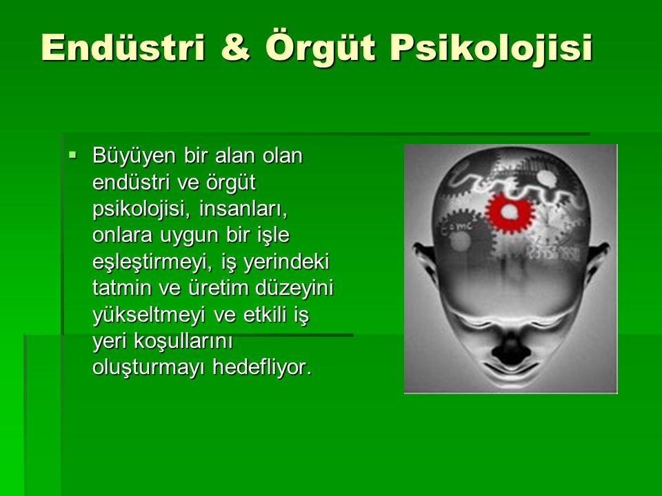 Endüstri & Örgüt Psikolojisi
