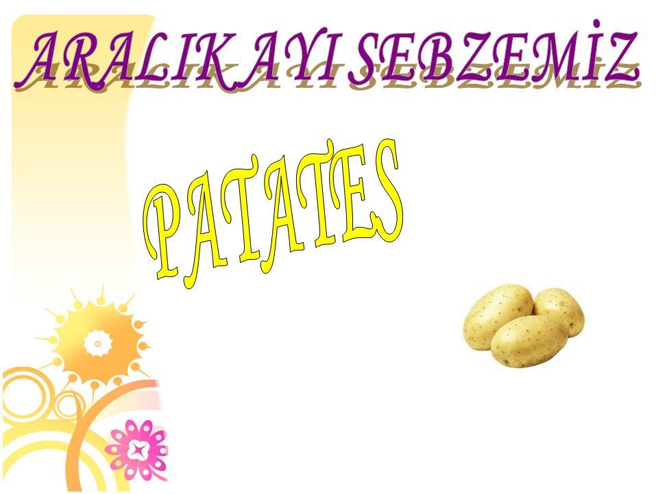 ARALIK AYI SEBZEMİZ PATATES