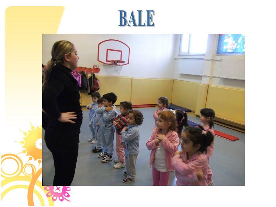 BALE 48