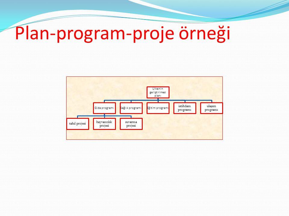 Plan-program-proje örneği