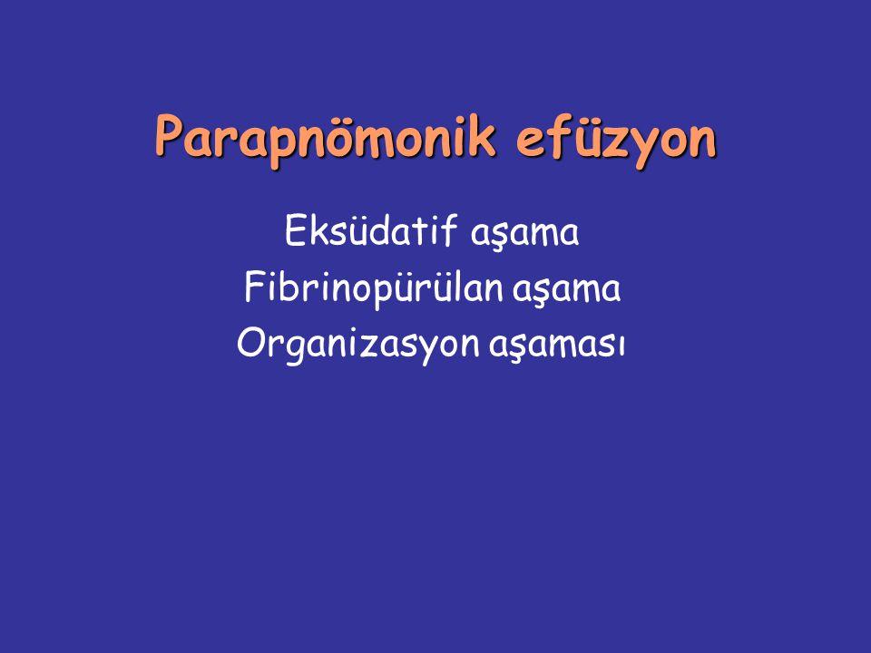 Eksüdatif aşama Fibrinopürülan aşama Organizasyon aşaması
