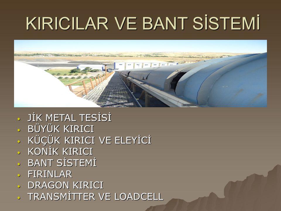 KIRICILAR VE BANT SİSTEMİ