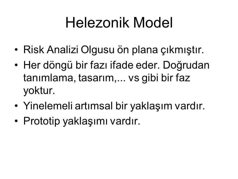Helezonik Model Risk Analizi Olgusu ön plana çıkmıştır.