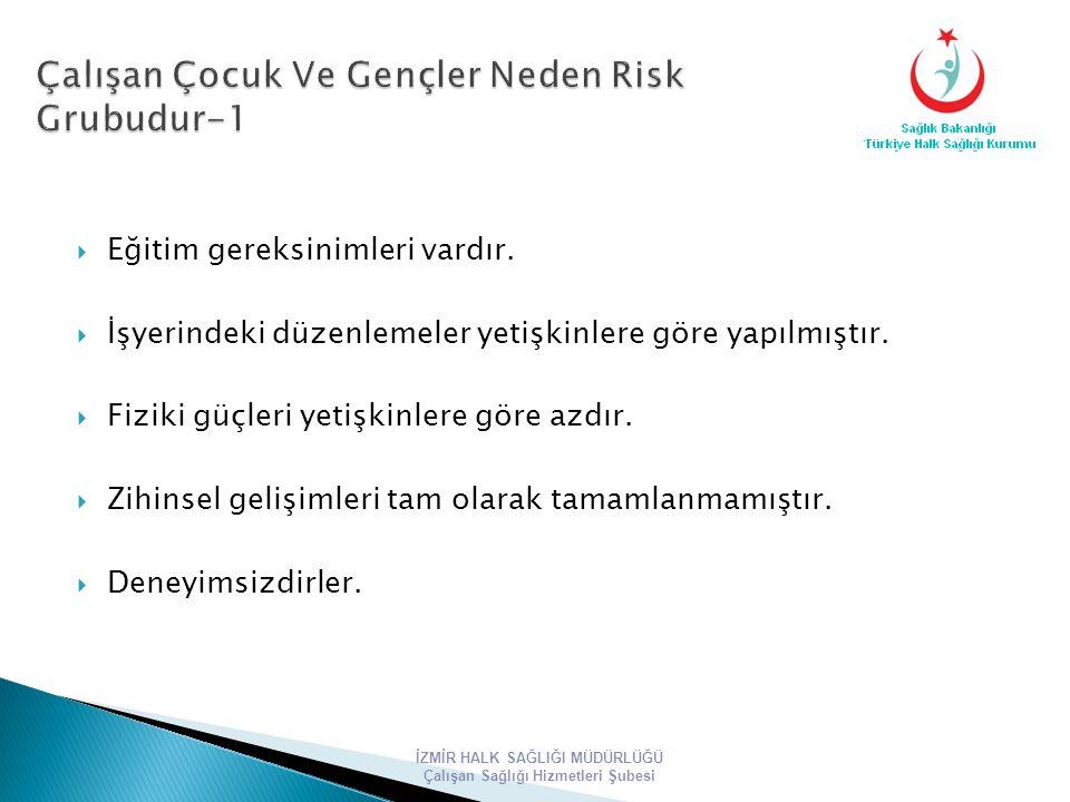 Çalışan Çocuk Ve Gençler Neden Risk Grubudur-1