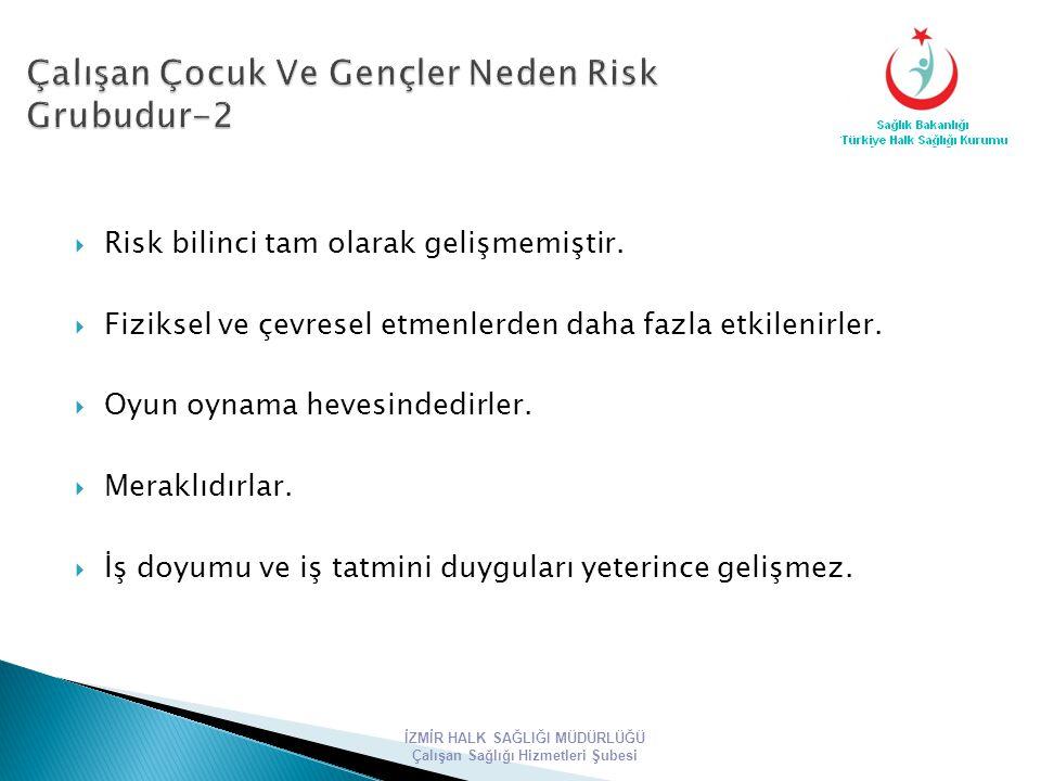 Çalışan Çocuk Ve Gençler Neden Risk Grubudur-2