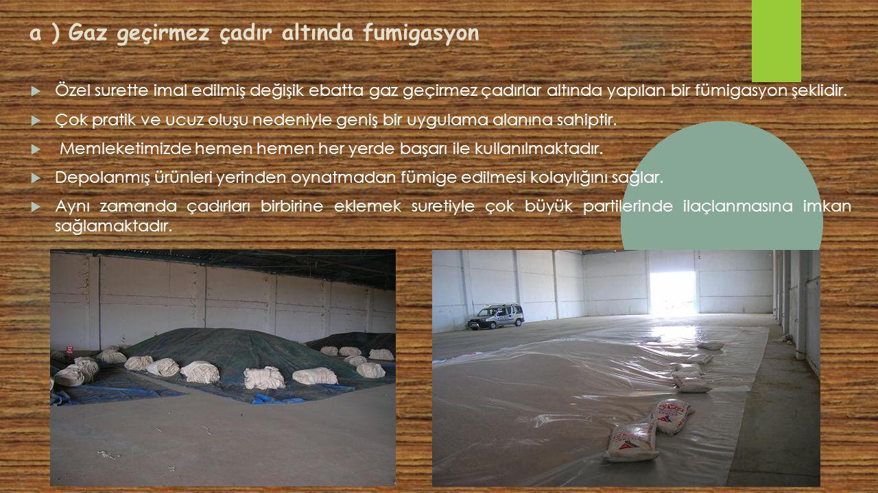 a ) Gaz geçirmez çadır altında fumigasyon