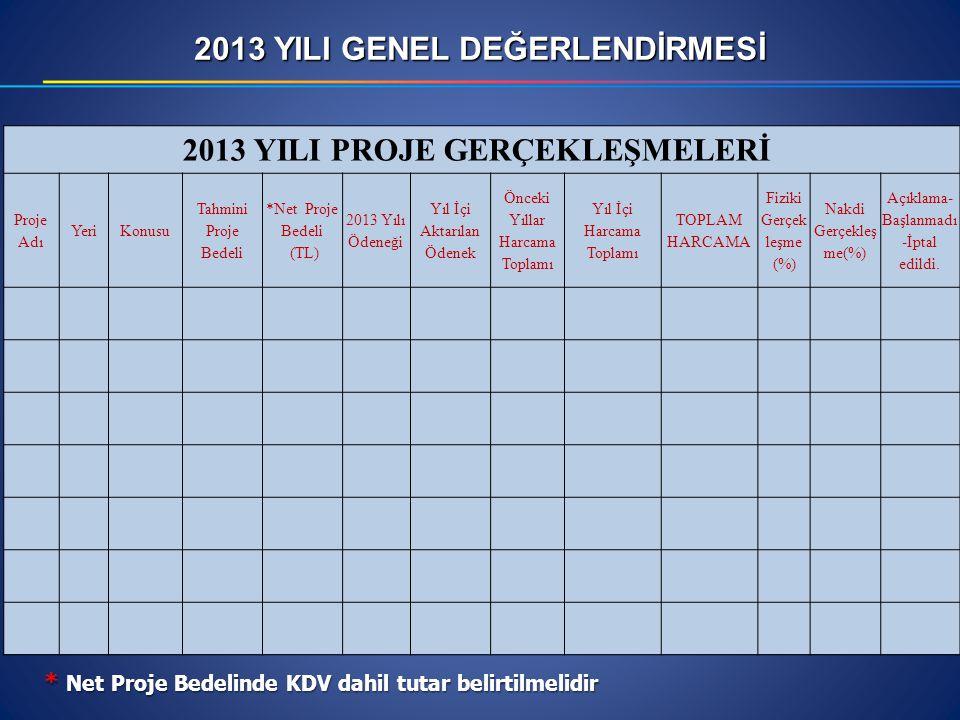 2013 YILI GENEL DEĞERLENDİRMESİ 2013 YILI PROJE GERÇEKLEŞMELERİ