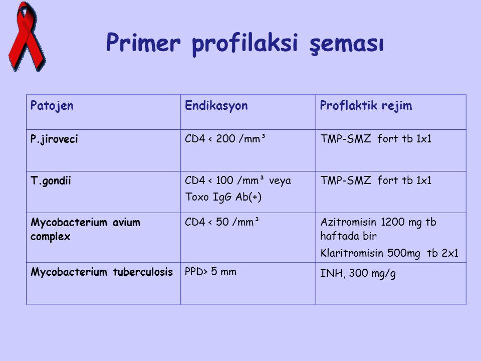 Primer profilaksi şeması