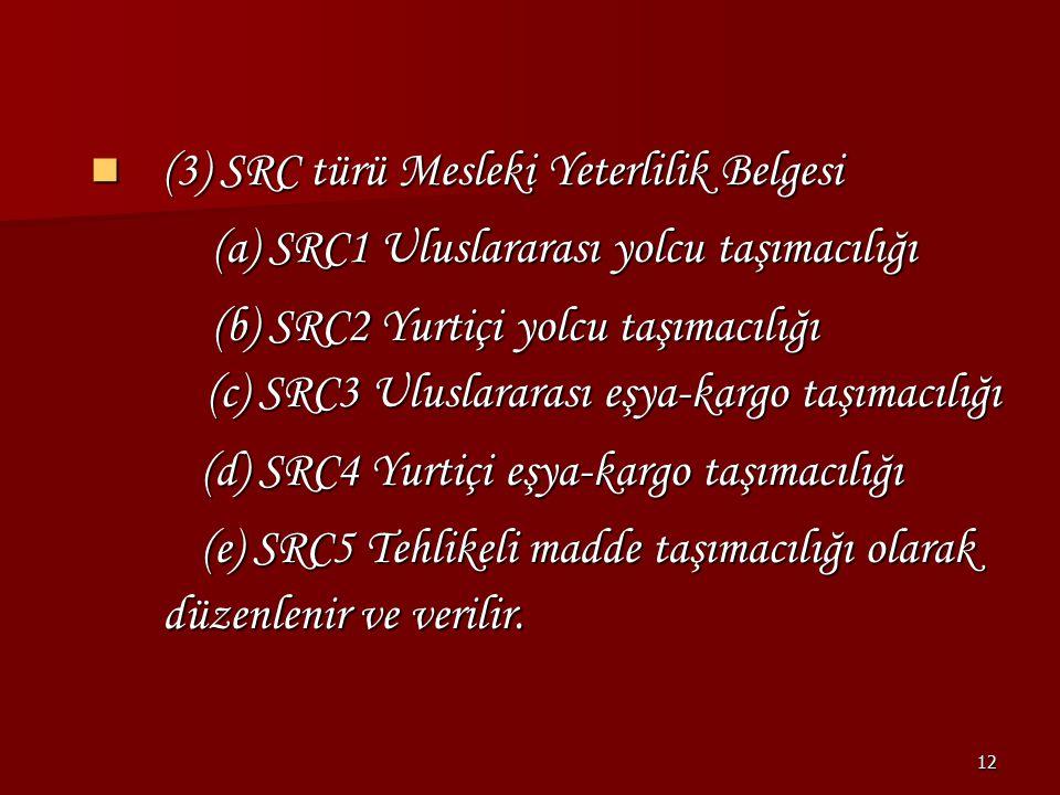 (3) SRC türü Mesleki Yeterlilik Belgesi