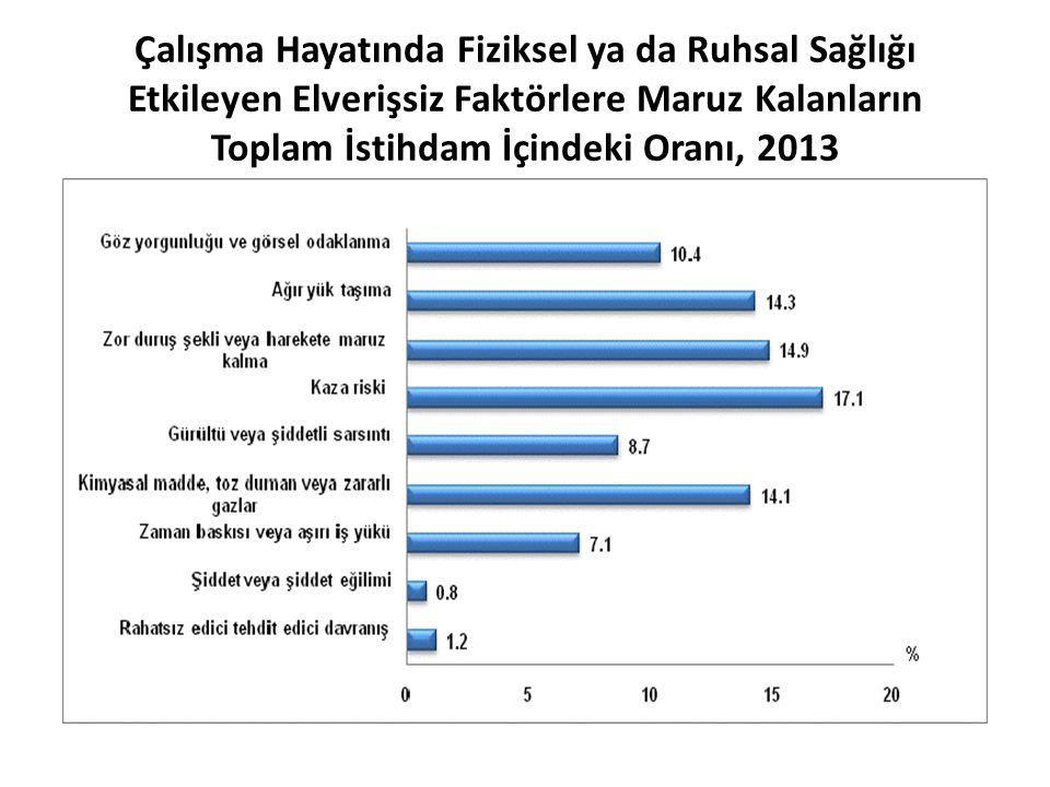 Çalışma Hayatında Fiziksel ya da Ruhsal Sağlığı Etkileyen Elverişsiz Faktörlere Maruz Kalanların Toplam İstihdam İçindeki Oranı, 2013