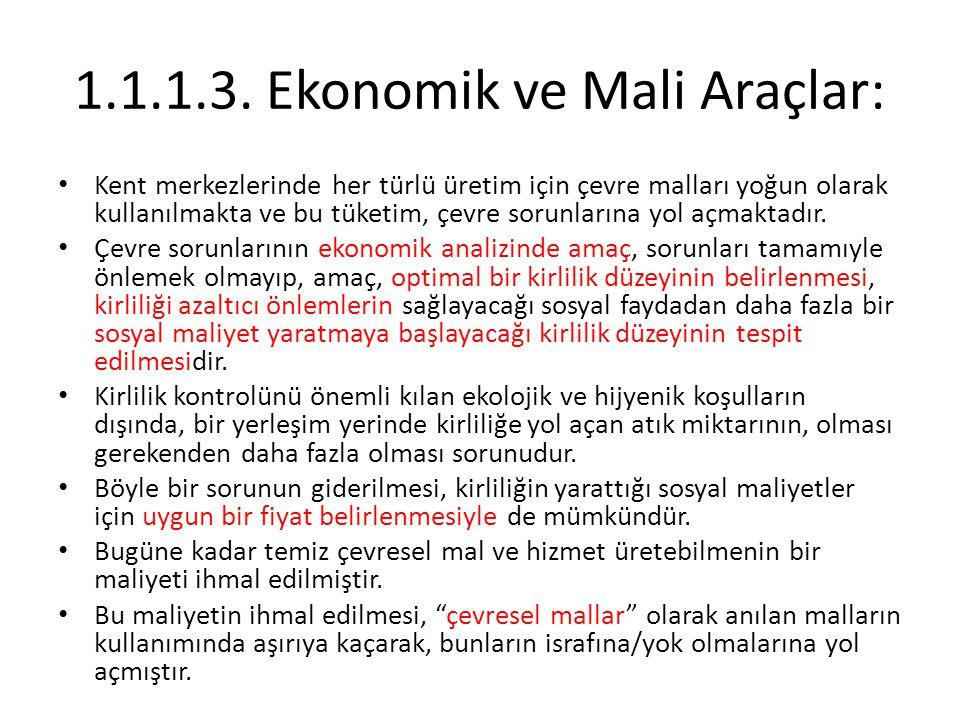 1.1.1.3. Ekonomik ve Mali Araçlar:
