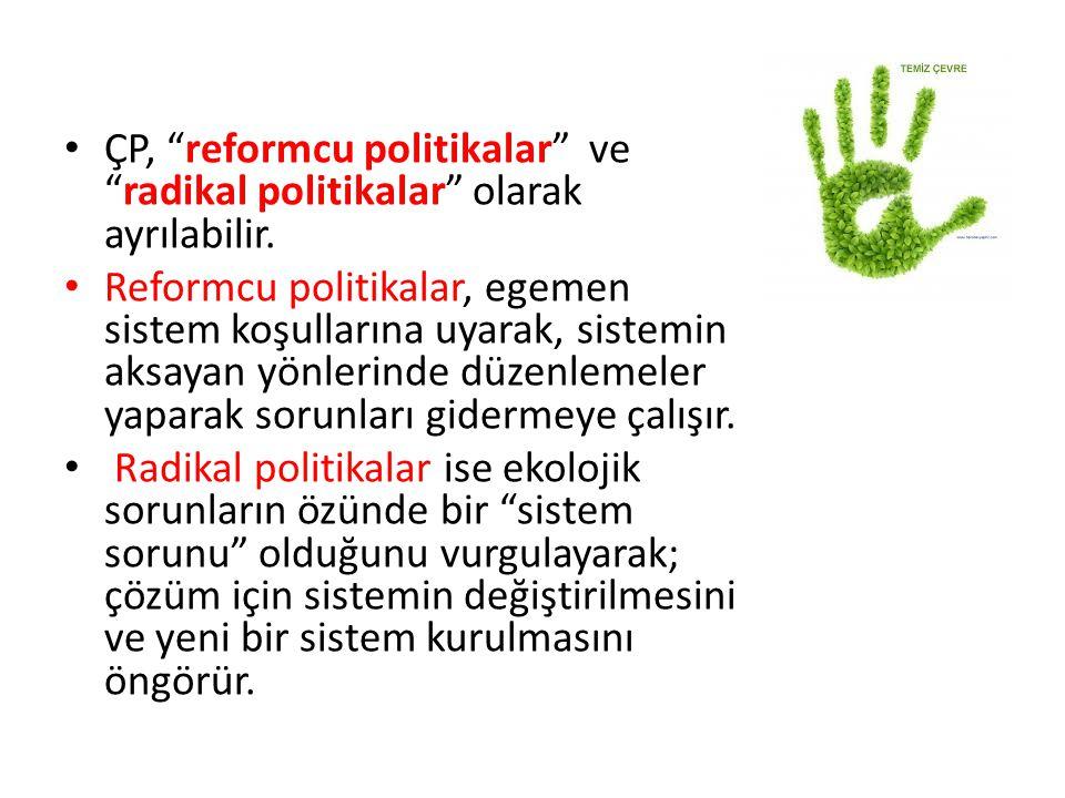 ÇP, reformcu politikalar ve radikal politikalar olarak ayrılabilir.