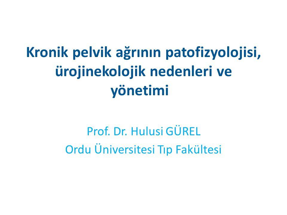 Prof. Dr. Hulusi GÜREL Ordu Üniversitesi Tıp Fakültesi