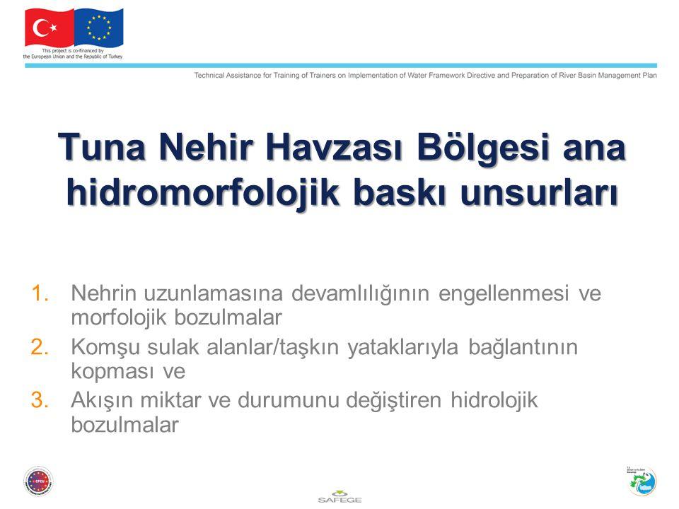 Tuna Nehir Havzası Bölgesi ana hidromorfolojik baskı unsurları