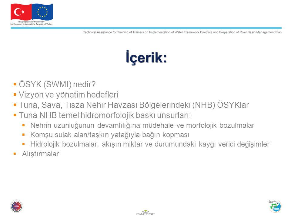 İçerik: ÖSYK (SWMI) nedir Vizyon ve yönetim hedefleri