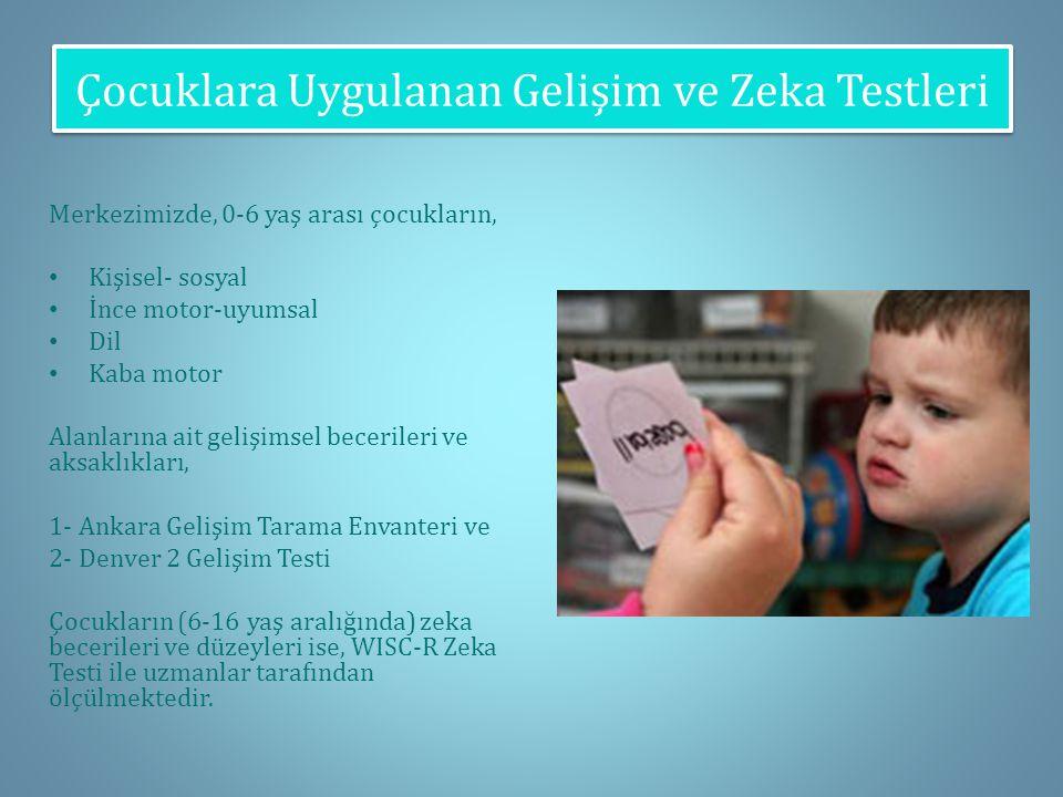 Çocuklara Uygulanan Gelişim ve Zeka Testleri