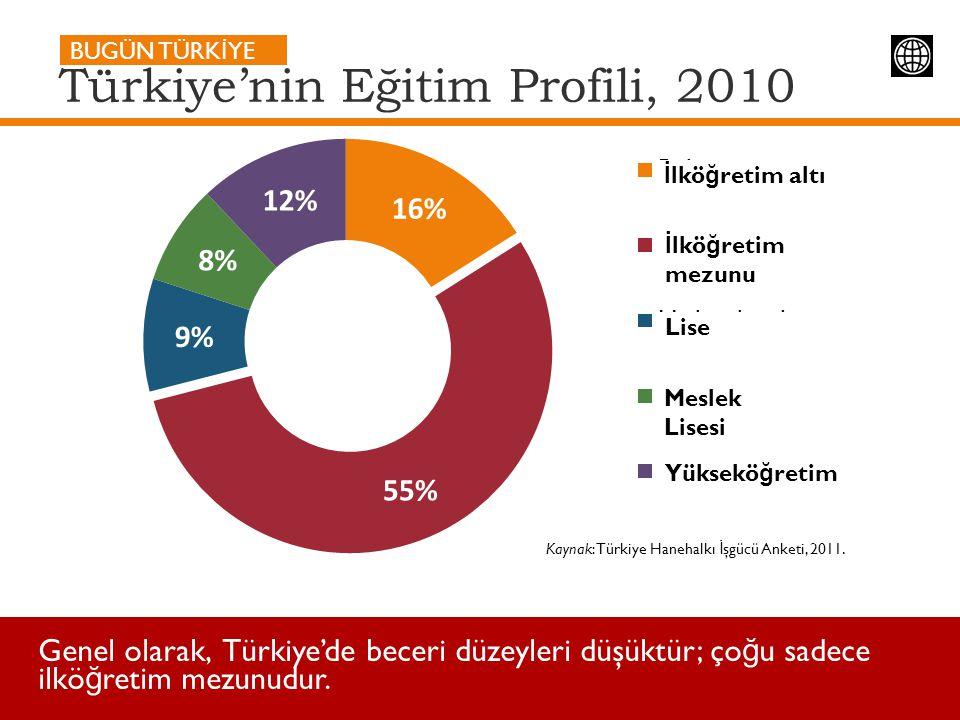 Türkiye'nin Eğitim Profili, 2010