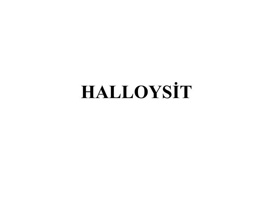 HALLOYSİT