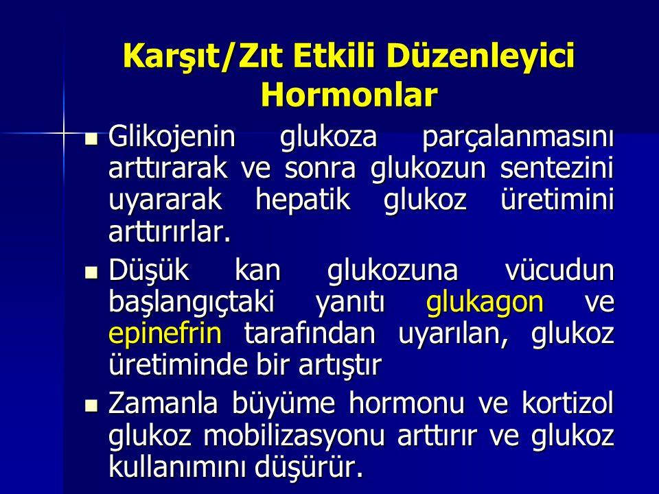 Karşıt/Zıt Etkili Düzenleyici Hormonlar