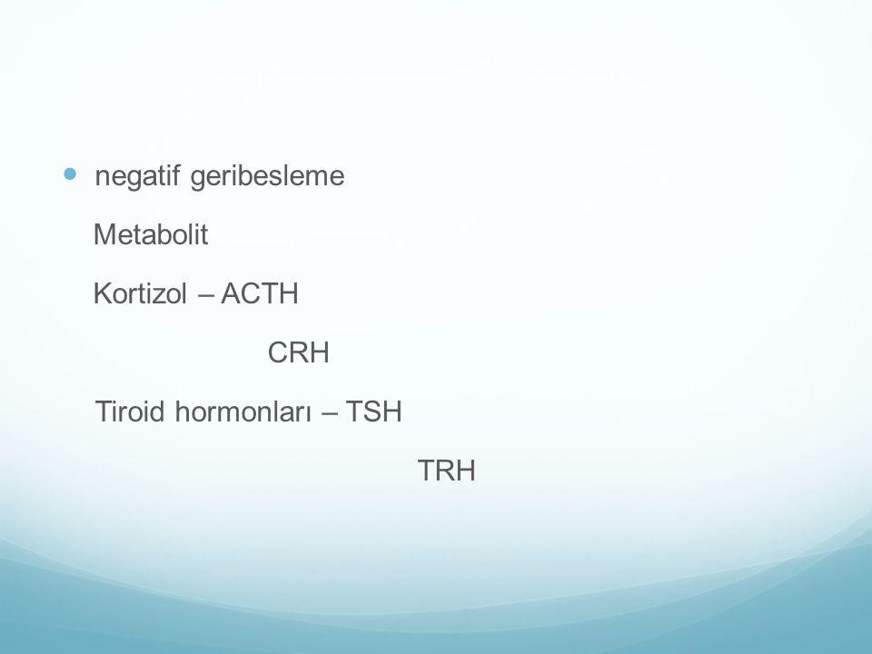 negatif geribesleme Metabolit Kortizol – ACTH CRH Tiroid hormonları – TSH TRH
