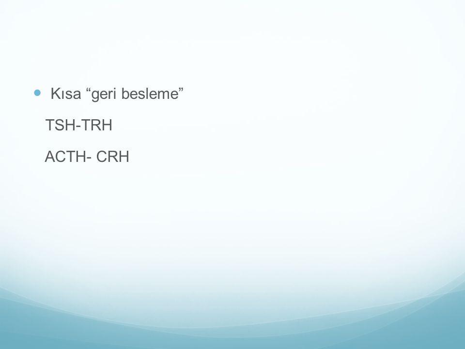 Kısa geri besleme TSH-TRH ACTH- CRH