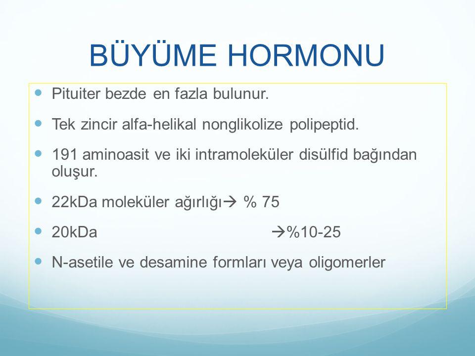 BÜYÜME HORMONU Pituiter bezde en fazla bulunur.